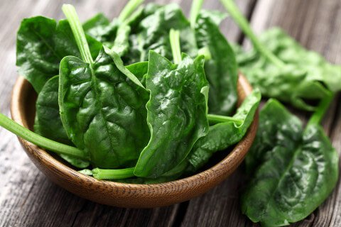 spinach-in-a-bowl-480x320